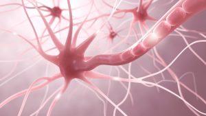 Welche Symptome treten bei der Multiplen Sklerose auf?